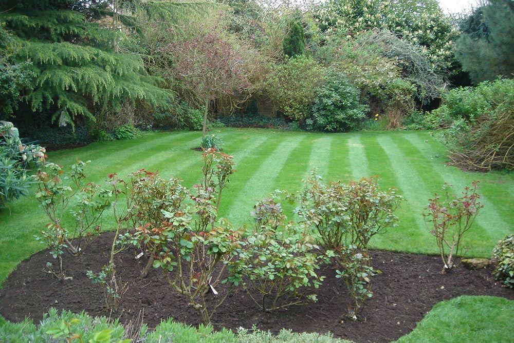 Garden Maintenance Wolverhampton