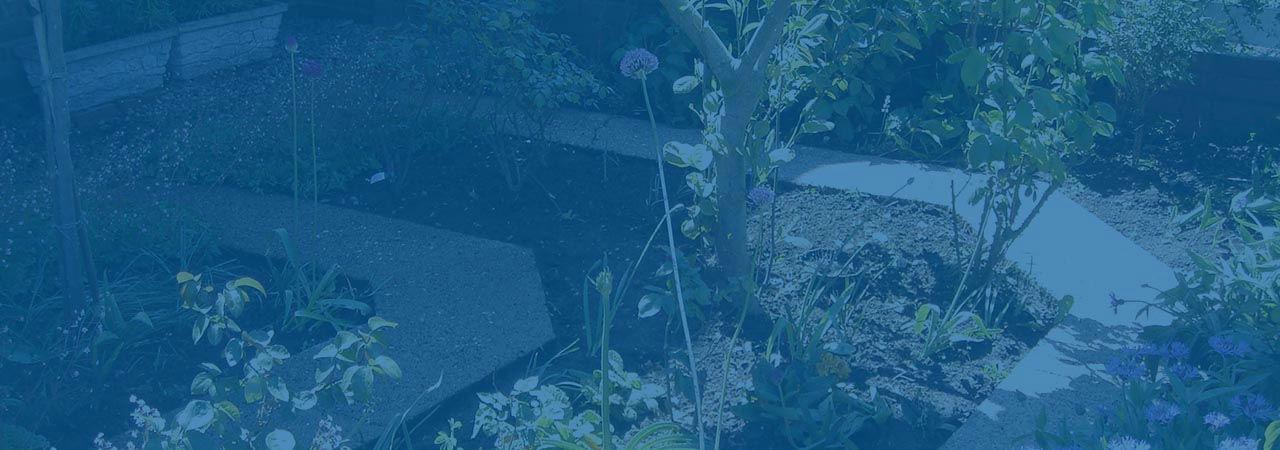 Garden Maintenance Services Wolverhampton