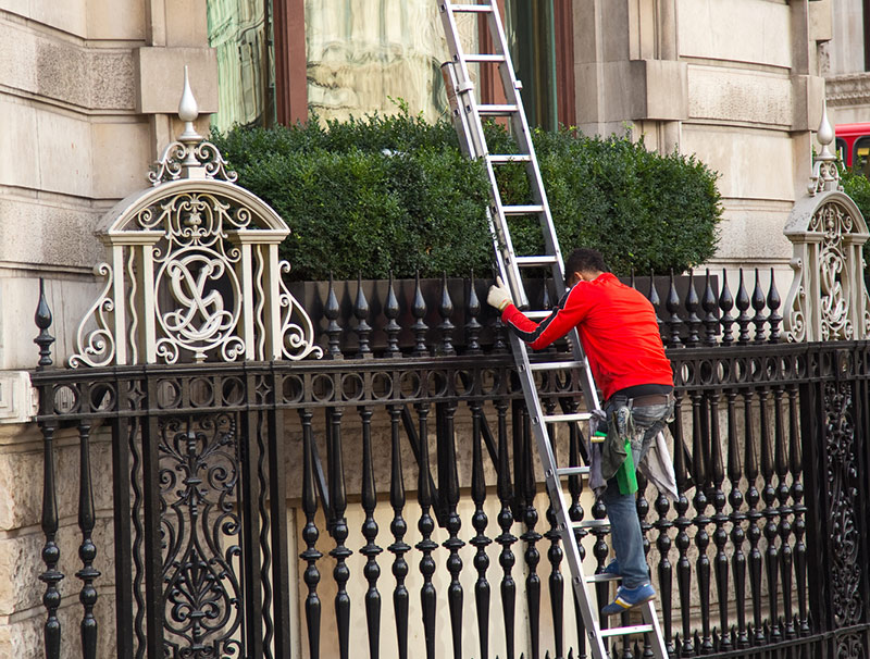 window cleaners ladders